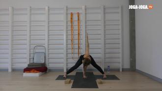 Wzmocnienie i elastyczność 1